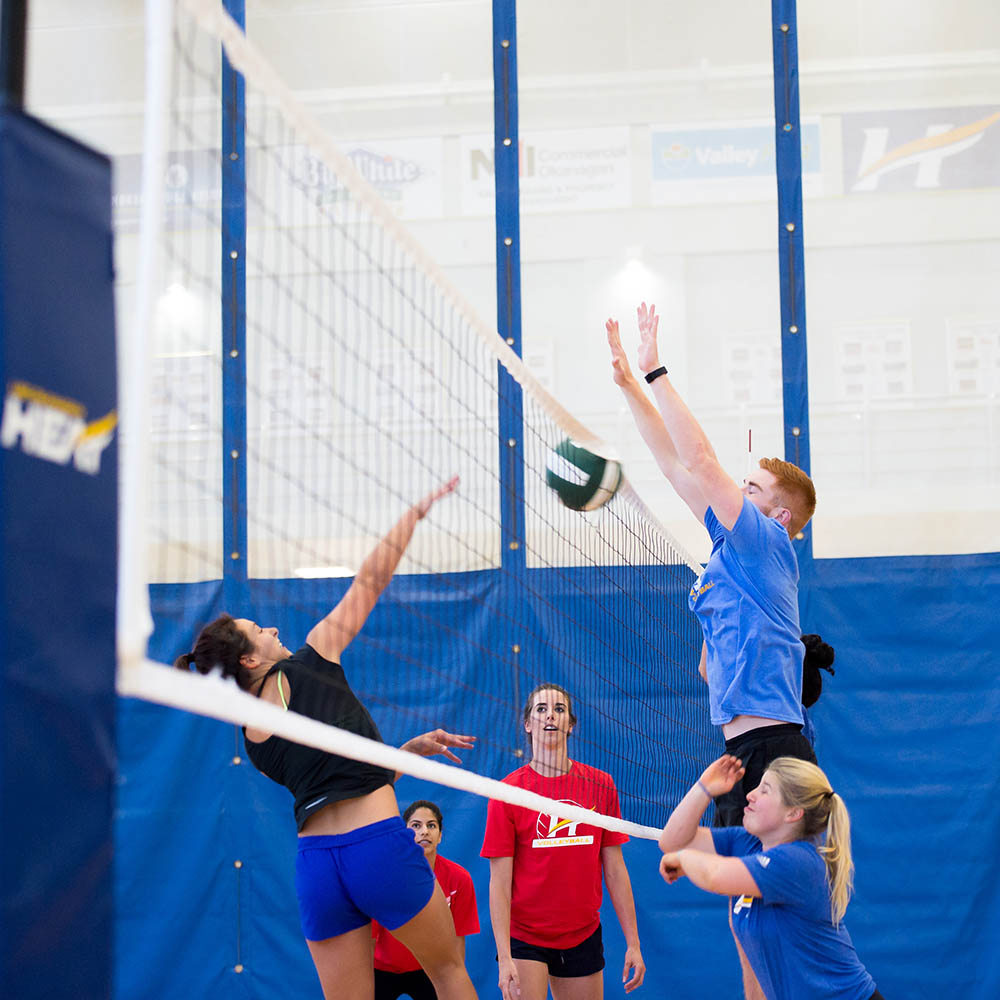 volleyball, indoor, intramurals, net