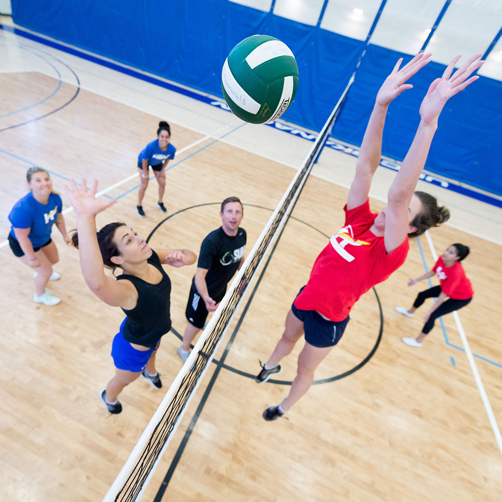 volleyball, indoor, intramurals