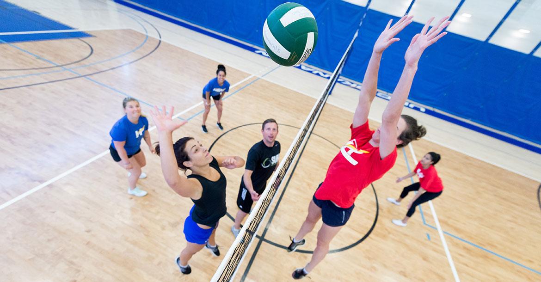 volleyball, indoor, intramurals